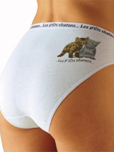 Chiloti cu imprimeu pisici - set de 10
