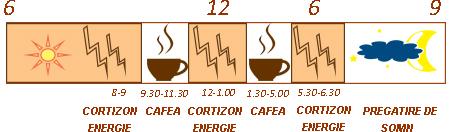 CONSUM-SANATOS-DE-CAFEA