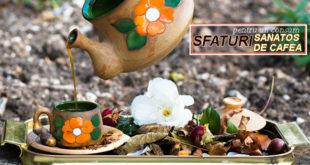 SFATURI-PENTRU-UN-CONSUM-SANATOS-DE-CAFEA