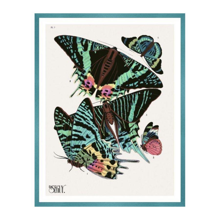 tablou cu fluturi
