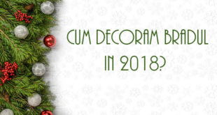cum-decoram-bradul-in-2018