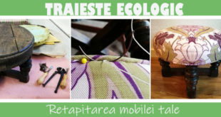 Traieste ecologic prin retapitarea mobilei tale - Decor - Plante - Animale