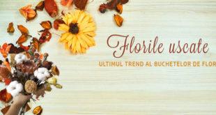 Flori uscate -ultimul trend al buchetelor de flori - Mireasa & Nunta